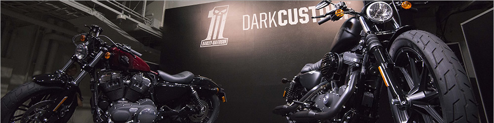 HARLEY-DAVIDSON DARK CUSTOM PARTY