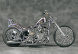 1979 SHOVEL HEAD / MOTOR CYCLES DEN