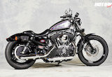 2010 XL1200N / FAST LADIESの画像