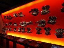 ハーレーミュージアム探訪・ハーレー106年の歴史を知るの画像