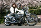 岩瀬 ひとみさん 2003年式 FXSTSの画像