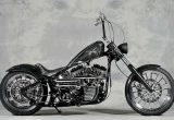 2002 FLSTF / SELECTED CUSTOM MOTORCYCLEの画像