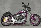 2008 SPORTSTER / MAIDS MOTORCYCLESの画像