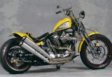 1991 FXSTS / HIGH FIELDの画像