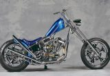 2000 EVOLUTION / SELECTED CUSTOM MOTORCYCLEの画像