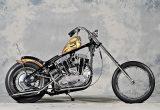 1966 XLCH / GREEN MOTORCYCLESの画像