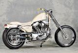 NICE! MOTORCYCLEの画像