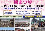 【イベント情報】3/9 に「2019 ザ・ヒロサワ・シティ 梅まつり」を開催!の画像