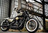 ハーレー屈指の人気を誇るForty-Eight(フォーティーエイト)をベースに製作された独国サンダーバイクのコンプリートカスタムの画像